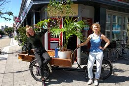 Het Plantenasiel Haarlem