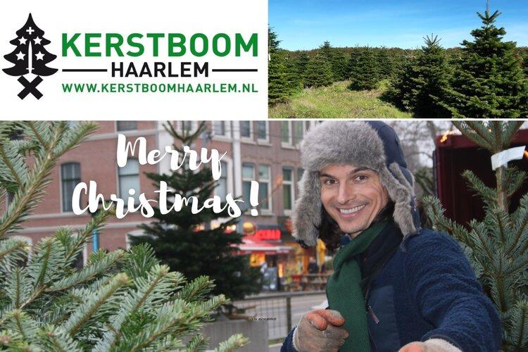 Gaat u voor een echte kerstboom dit jaar? Ga dan langs bij Kerstboom Haarlem